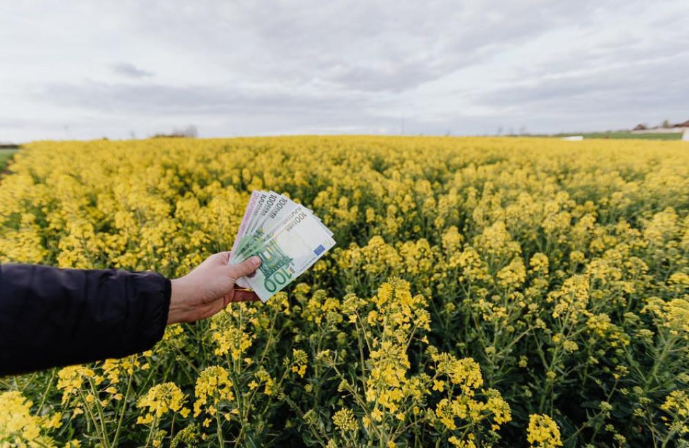 Tips om geld te besparen op je vakantie